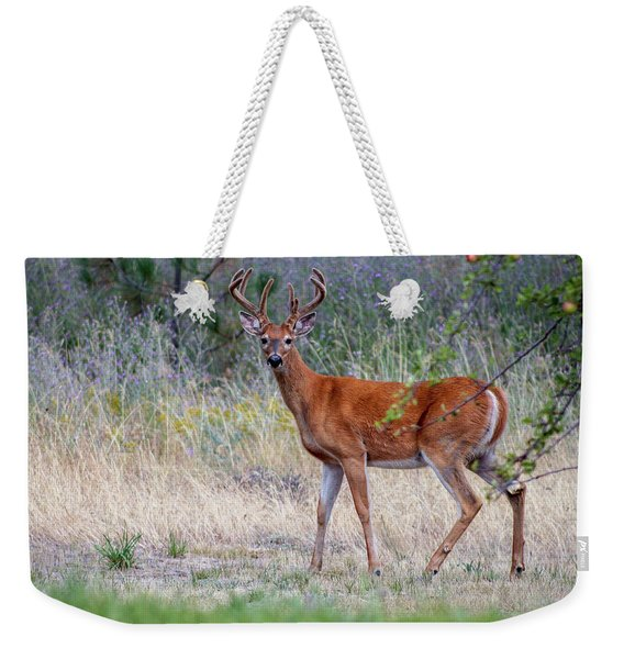 Weekender Tote Bag featuring the photograph Red Bucks 1 by Antonio Romero