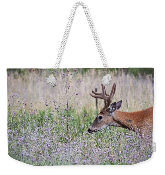 Weekender Tote Bag featuring the photograph Red Bucks 4 by Antonio Romero