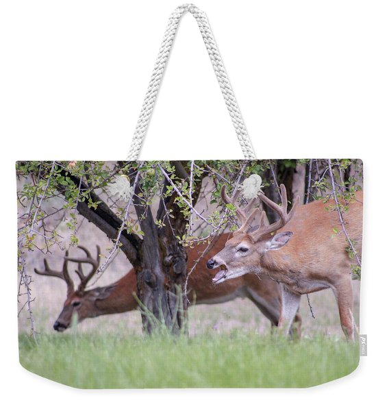Weekender Tote Bag featuring the photograph Red Bucks 5 by Antonio Romero