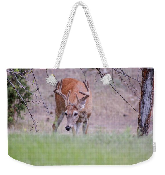 Weekender Tote Bag featuring the photograph Red Bucks 6 by Antonio Romero