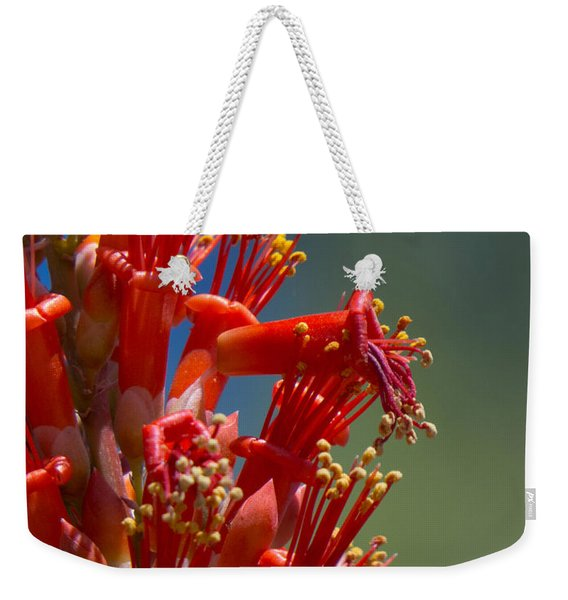 Red Cactus Flower 1 Weekender Tote Bag