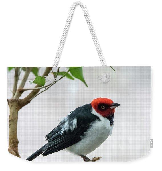 Red Capped Cardinal 2 Weekender Tote Bag