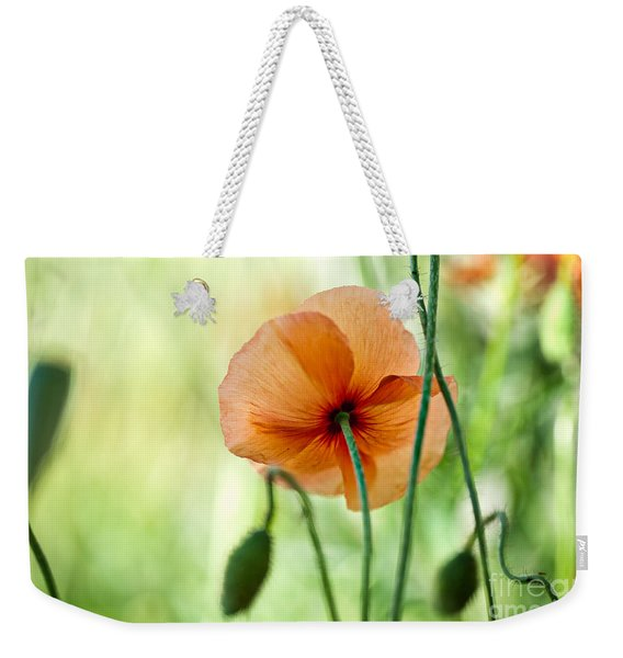 Red Corn Poppy Flowers 02 Weekender Tote Bag