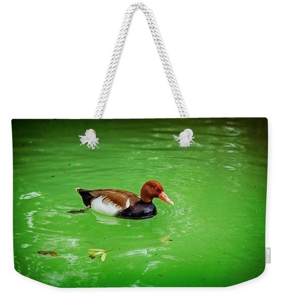 Red-crested Pochard Duck Weekender Tote Bag