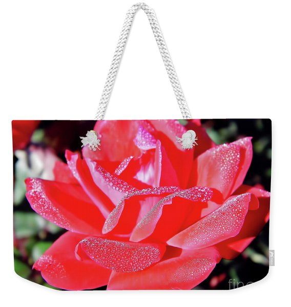 Red - Dew Covered  - Rose Weekender Tote Bag