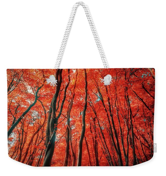Red Forest Of Sunlight Weekender Tote Bag