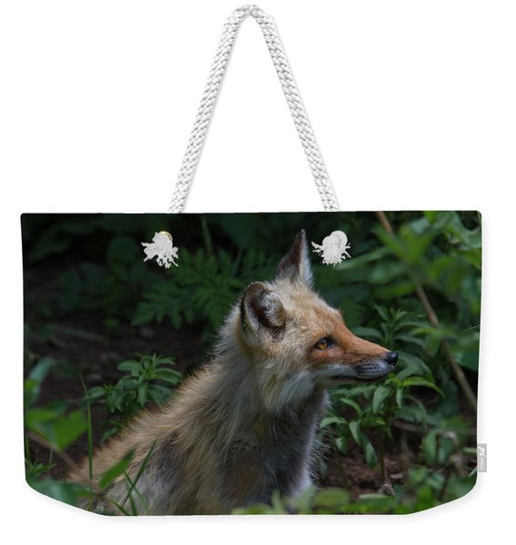 Red Fox In The Forest Weekender Tote Bag
