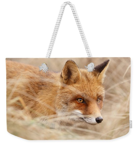 Red Fox On The Hunt Weekender Tote Bag