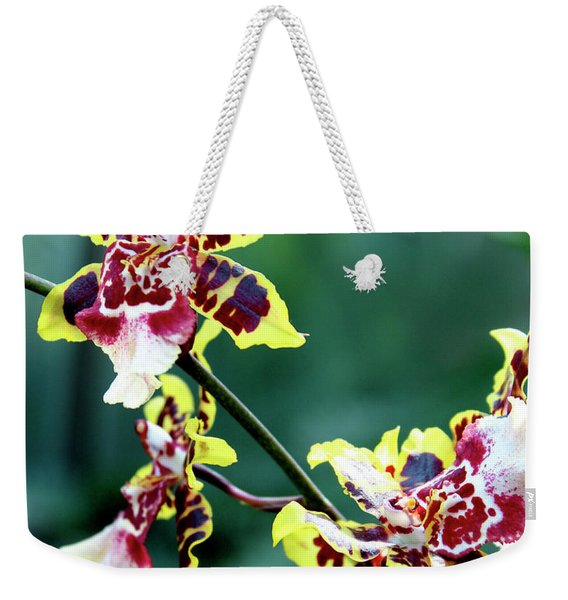 Striped Maroon And Yellow Orchid Weekender Tote Bag