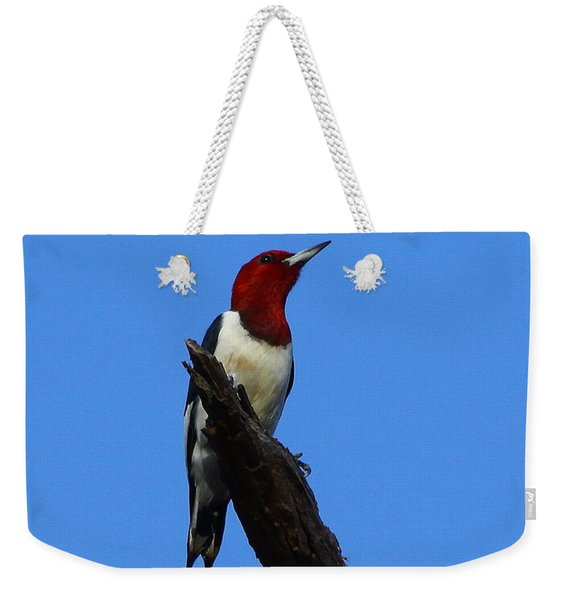Red Headed Woodpecker On A Snag Weekender Tote Bag