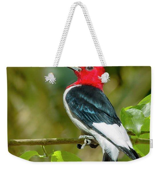 Red-headed Woodpecker Portrait Weekender Tote Bag