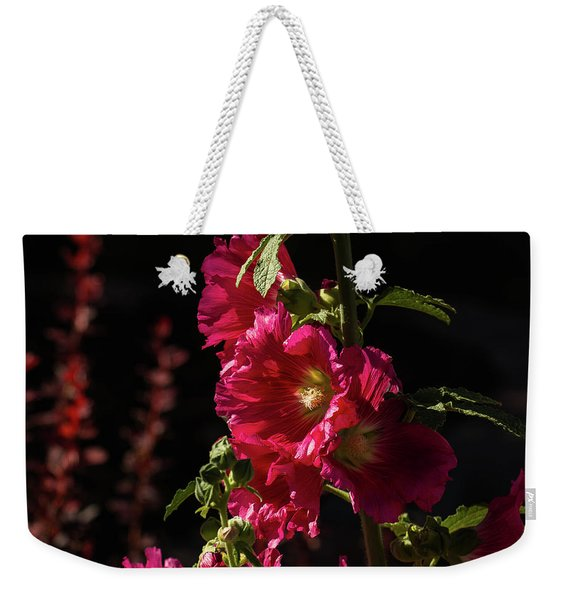 Red Holly In Evening Light Weekender Tote Bag
