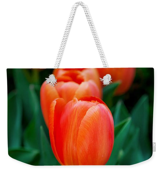 Red Tulips Weekender Tote Bag