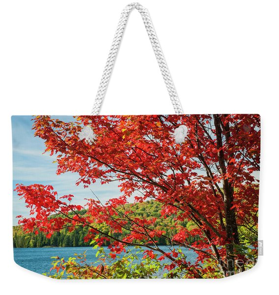 Red Maple On Lake Shore Weekender Tote Bag