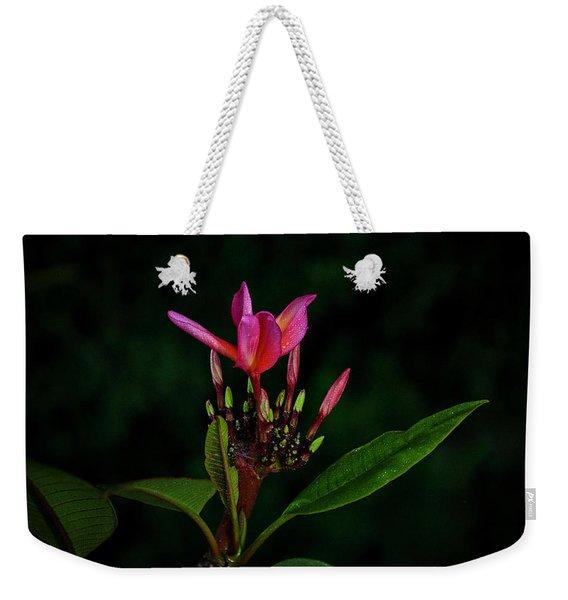 Red Plumeria Weekender Tote Bag