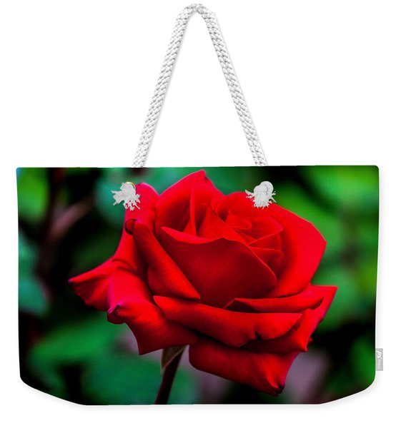 Red Rose 2 Weekender Tote Bag