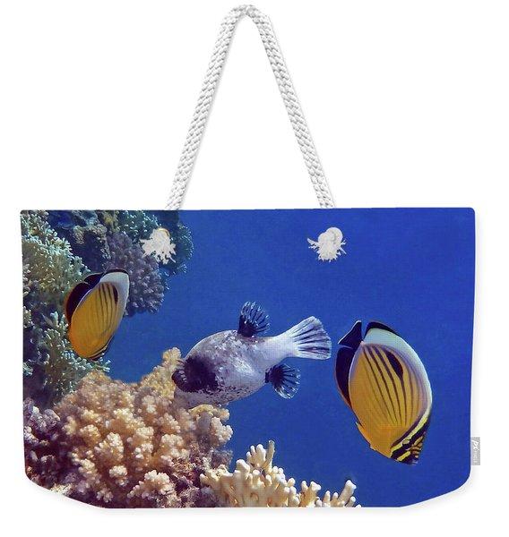 Red Sea Butterflyfish And Pufferfish Weekender Tote Bag