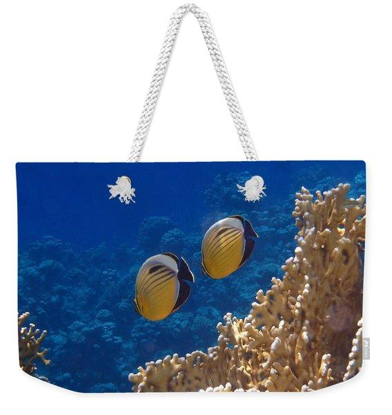Red Sea Exquisite Butterflyfish  Weekender Tote Bag