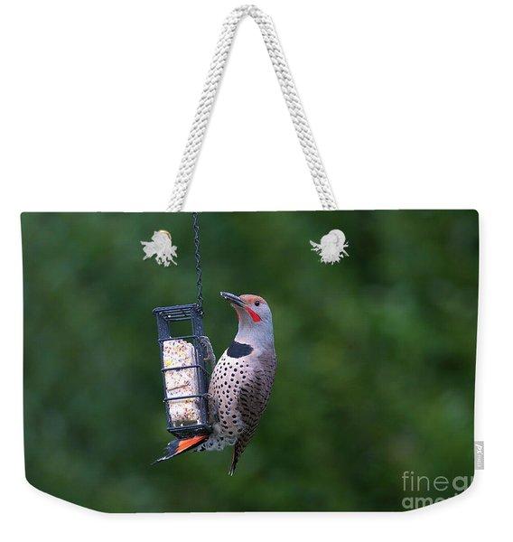 Red-shafted Northern Flicker On Suet Weekender Tote Bag