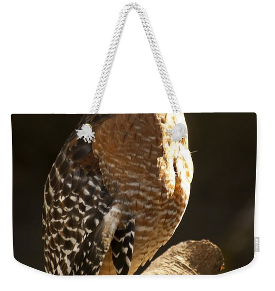 Weekender Tote Bag featuring the photograph Red-shouldered Hawk by Carolyn Marshall