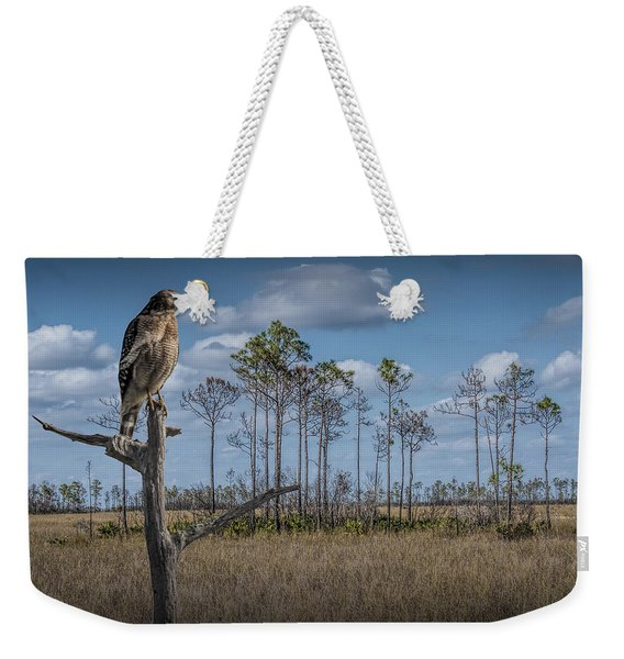 Red Shouldered Hawk In The Florida Everglades Weekender Tote Bag