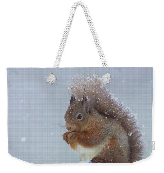 Red Squirrel In A Blizzard Weekender Tote Bag