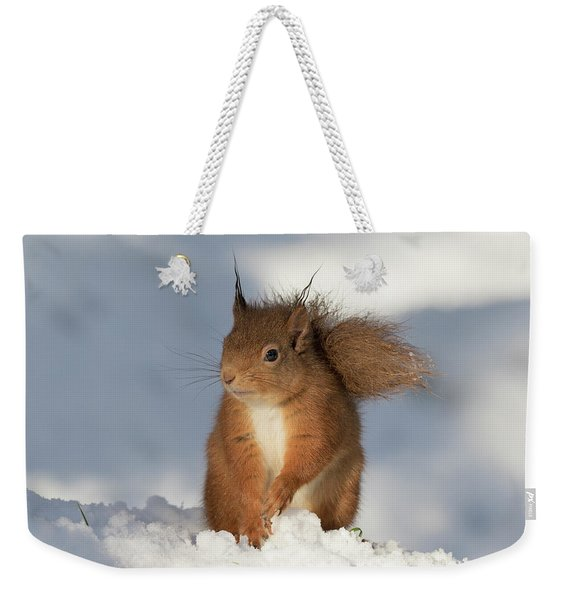 Red Squirrel In The Snow Weekender Tote Bag