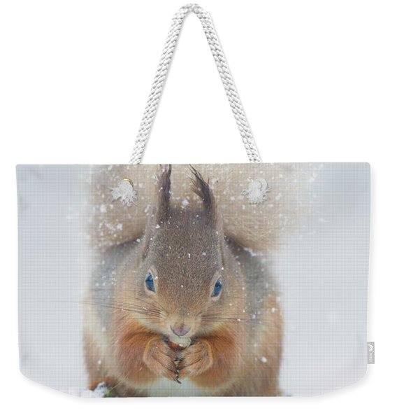 Red Squirrel Nibbles A Nut In The Snow Weekender Tote Bag