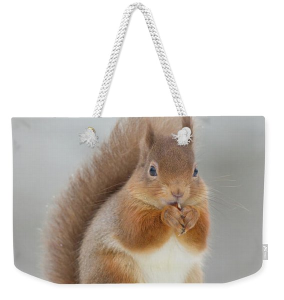 Red Squirrel Nibbling A Hazelnut In The Snow Weekender Tote Bag