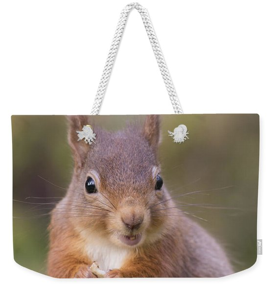 Red Squirrel - Scottish Highlands #18 Weekender Tote Bag