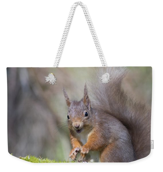 Red Squirrel - Scottish Highlands #26 Weekender Tote Bag