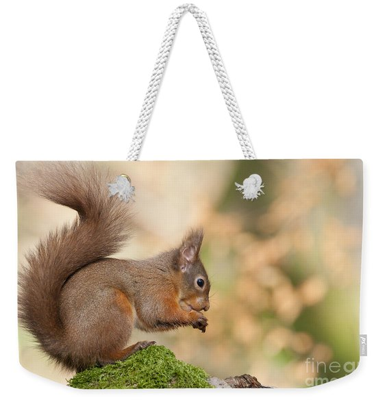 A Moment Of Meditation - Red Squirrel #27 Weekender Tote Bag