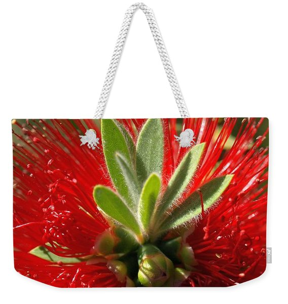 Red Surprise Weekender Tote Bag