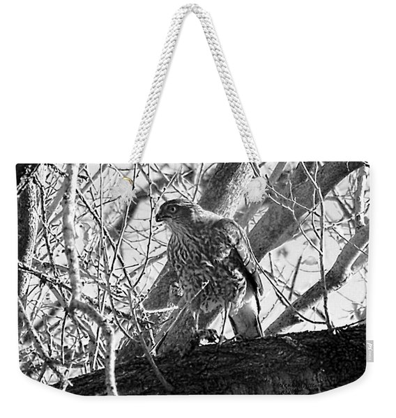 Weekender Tote Bag featuring the digital art Red Tail Hawk In Black And White by Deleas Kilgore