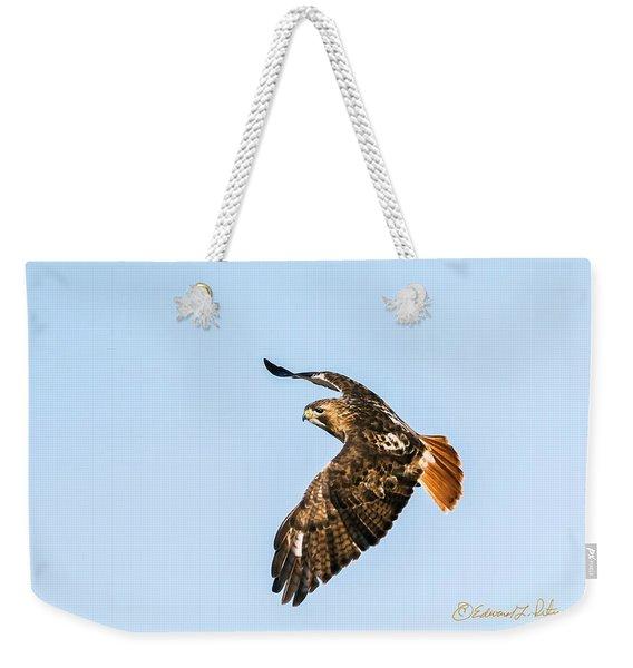 Red-tail Hawk In Flight Weekender Tote Bag