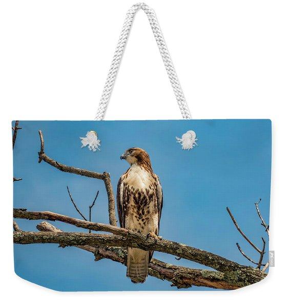 Red Tail Hawk Perched Weekender Tote Bag