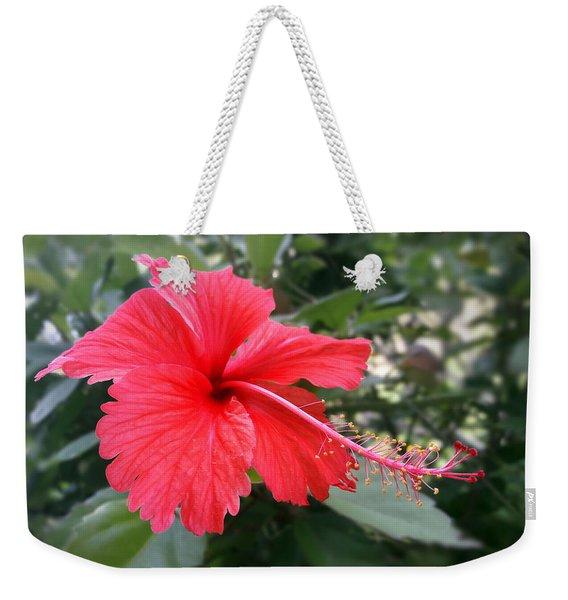 Red-tailed Flower Portrait Weekender Tote Bag