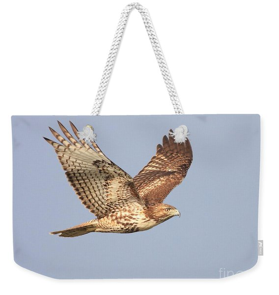 Red Tailed Hawk 20100101-1 Weekender Tote Bag