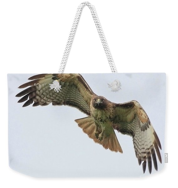 Red Tailed Hawk Finds Its Prey Weekender Tote Bag