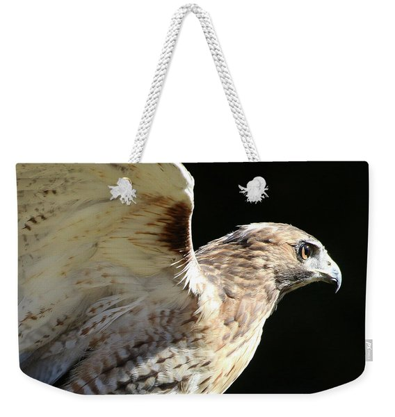 Weekender Tote Bag featuring the photograph Red-tailed Hawk In Profile by William Selander