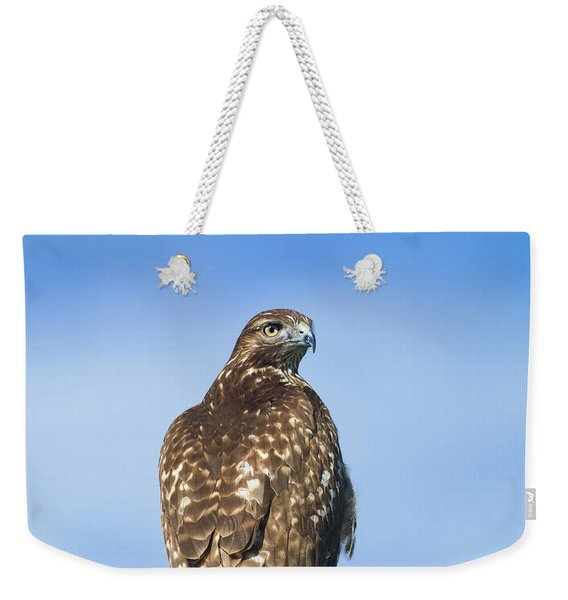 Red-tailed Hawk Perched Looking Back Over Shoulder Weekender Tote Bag