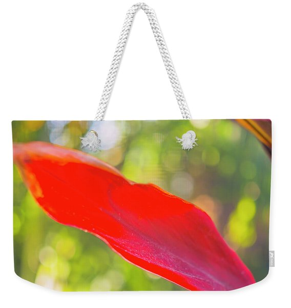 Red Ti Leaves 08 Weekender Tote Bag