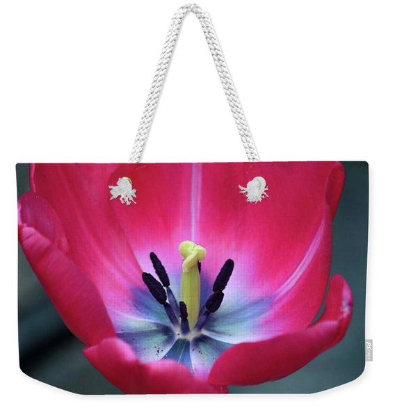 Red Tulip Blossom With Stamen And Petals And Pistil Weekender Tote Bag