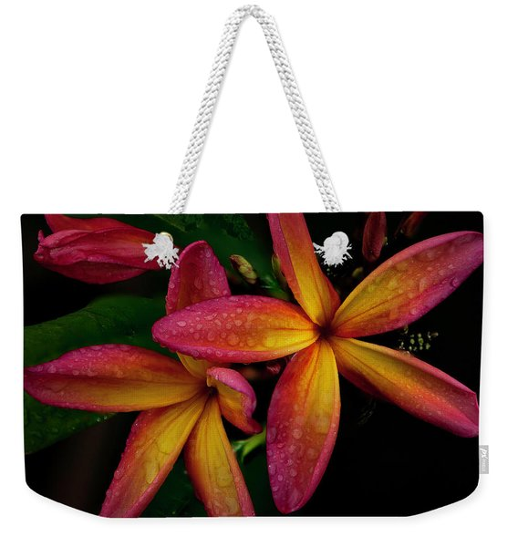 Red/yellow Plumeria In Bloom Weekender Tote Bag