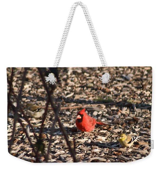 Redbird And American Golden Finch Weekender Tote Bag