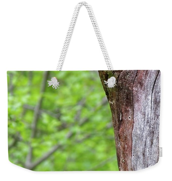 Redstart Weekender Tote Bag