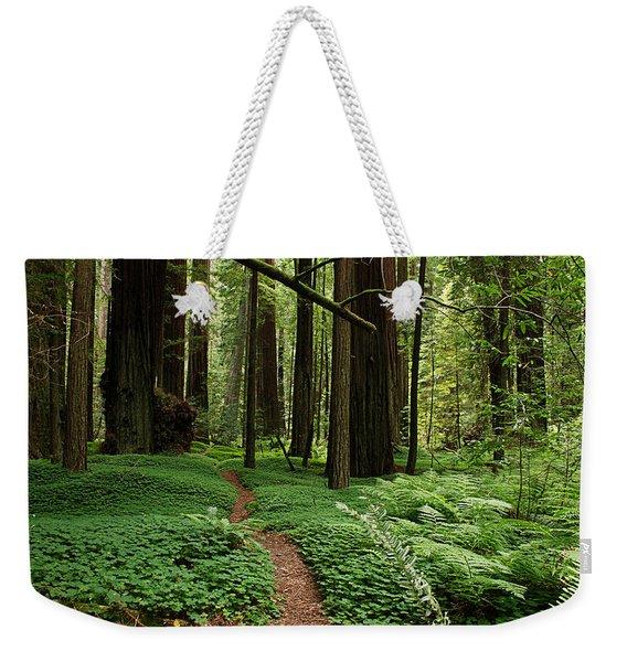 Redwood Forest Path Weekender Tote Bag