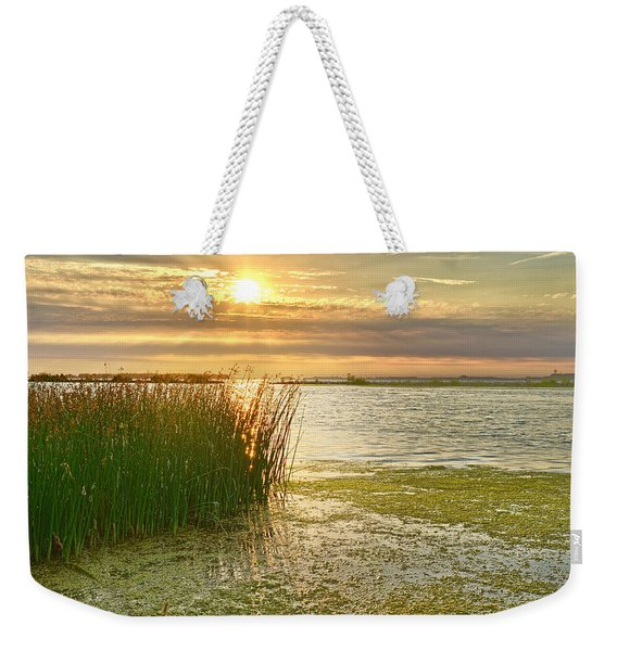 Reeds In The Sunset Weekender Tote Bag