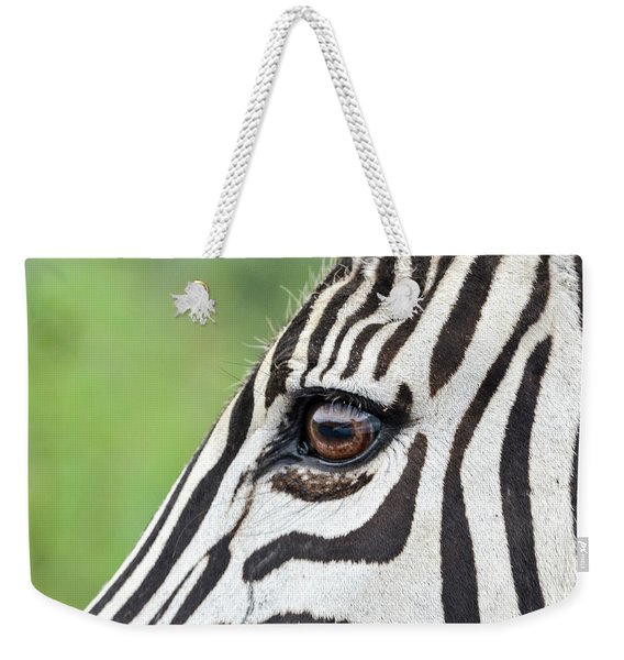 Reflection In A Zebra Eye Weekender Tote Bag