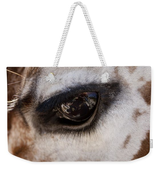 Reflection Of A Friend Weekender Tote Bag